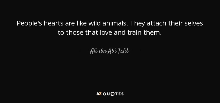 People's hearts are like wild animals. They attach their selves to those that love and train them. - Ali ibn Abi Talib