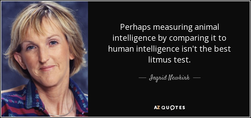 Perhaps measuring animal intelligence by comparing it to human intelligence isn't the best litmus test. - Ingrid Newkirk