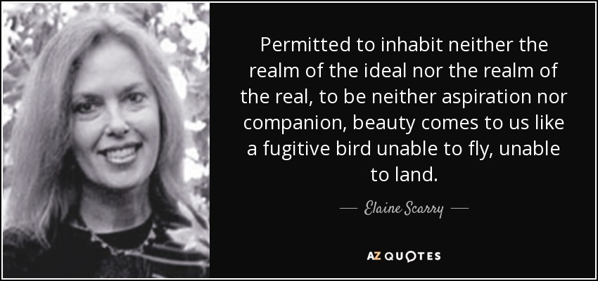 Permitted to inhabit neither the realm of the ideal nor the realm of the real, to be neither aspiration nor companion, beauty comes to us like a fugitive bird unable to fly, unable to land. - Elaine Scarry