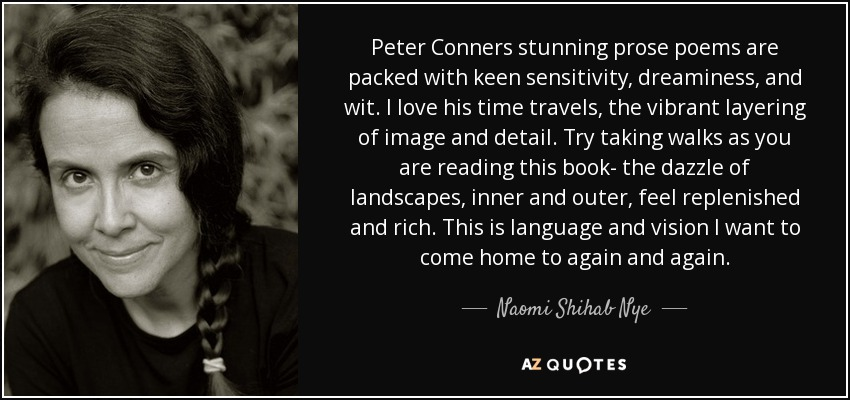 Peter Conners stunning prose poems are packed with keen sensitivity, dreaminess, and wit. I love his time travels, the vibrant layering of image and detail. Try taking walks as you are reading this book- the dazzle of landscapes, inner and outer, feel replenished and rich. This is language and vision I want to come home to again and again. - Naomi Shihab Nye