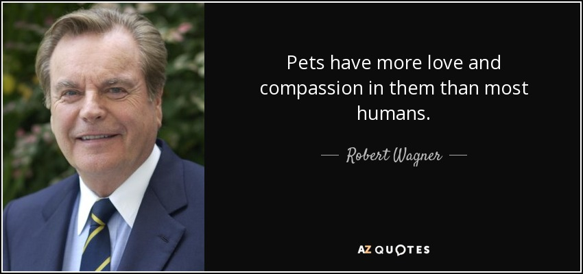 Pets have more love and compassion in them than most humans. - Robert Wagner