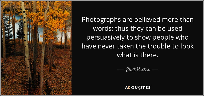 Photographs are believed more than words; thus they can be used persuasively to show people who have never taken the trouble to look what is there. - Eliot Porter