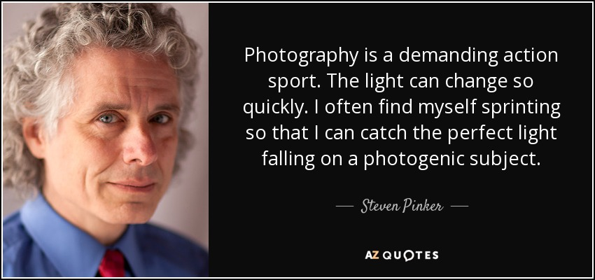Photography is a demanding action sport. The light can change so quickly. I often find myself sprinting so that I can catch the perfect light falling on a photogenic subject. - Steven Pinker