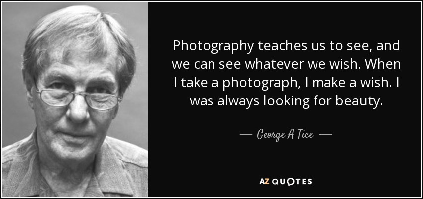 Photography teaches us to see, and we can see whatever we wish. When I take a photograph, I make a wish. I was always looking for beauty. - George A Tice
