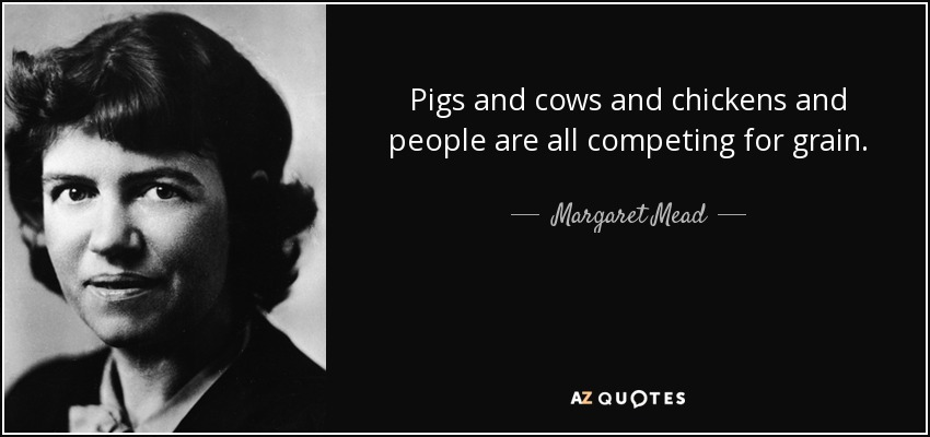 Pigs and cows and chickens and people are all competing for grain. - Margaret Mead