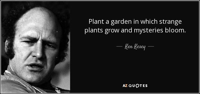Plant a garden in which strange plants grow and mysteries bloom. - Ken Kesey