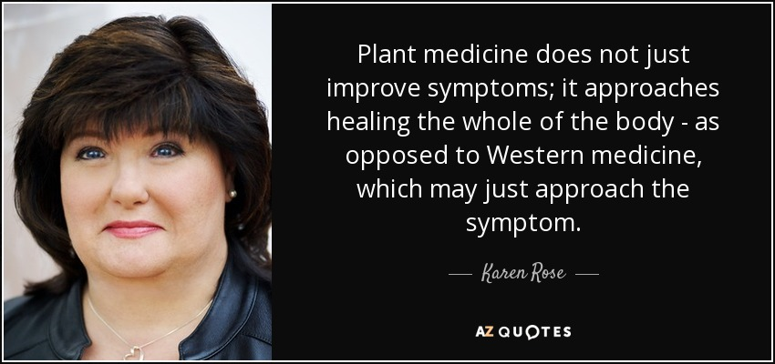 Plant medicine does not just improve symptoms; it approaches healing the whole of the body - as opposed to Western medicine, which may just approach the symptom. - Karen Rose