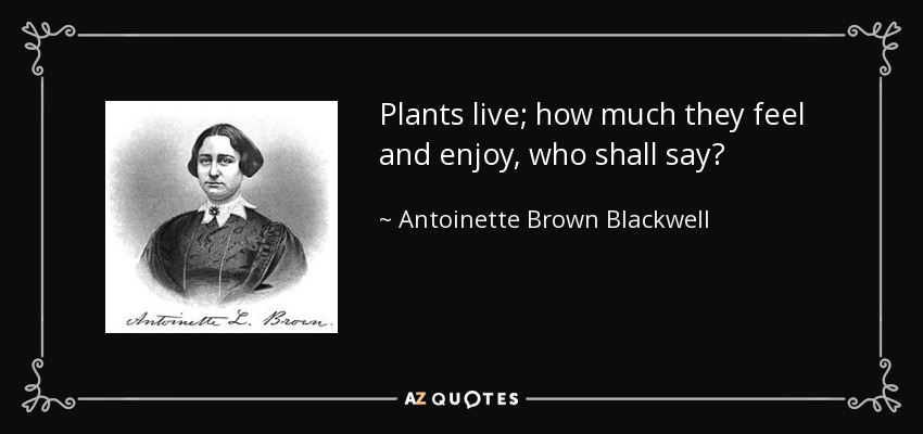 Plants live; how much they feel and enjoy, who shall say? - Antoinette Brown Blackwell