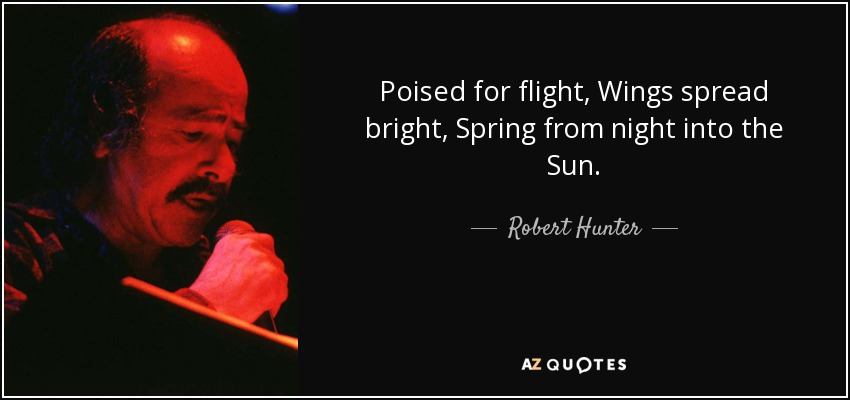Poised for flight, Wings spread bright, Spring from night into the Sun. - Robert Hunter