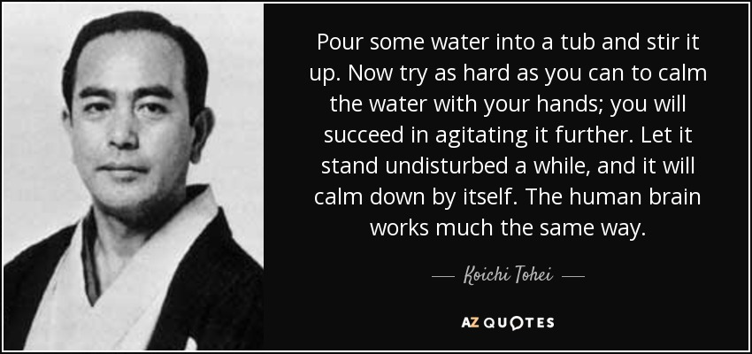 Pour some water into a tub and stir it up. Now try as hard as you can to calm the water with your hands; you will succeed in agitating it further. Let it stand undisturbed a while, and it will calm down by itself. The human brain works much the same way. - Koichi Tohei