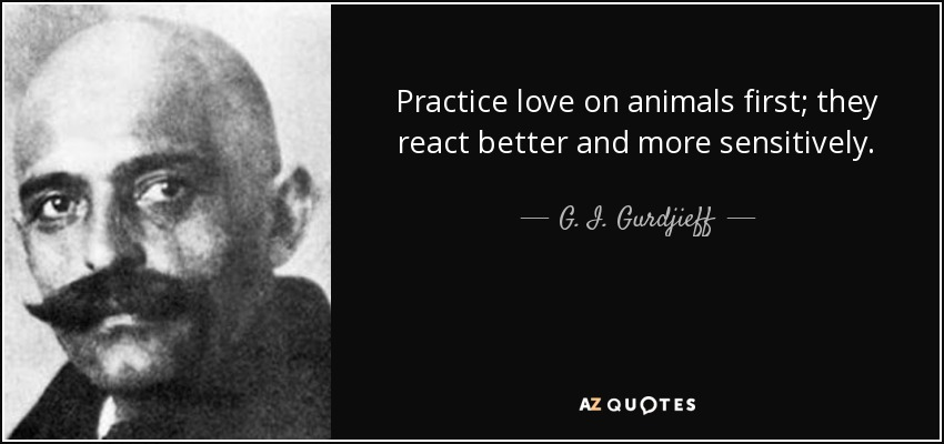 Practice love on animals first; they react better and more sensitively. - G. I. Gurdjieff