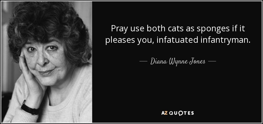 Pray use both cats as sponges if it pleases you, infatuated infantryman. - Diana Wynne Jones