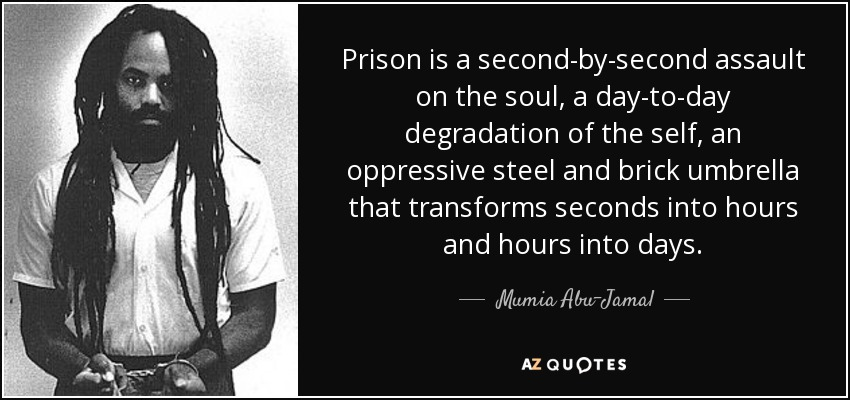 Prison is a second-by-second assault on the soul, a day-to-day degradation of the self, an oppressive steel and brick umbrella that transforms seconds into hours and hours into days. - Mumia Abu-Jamal