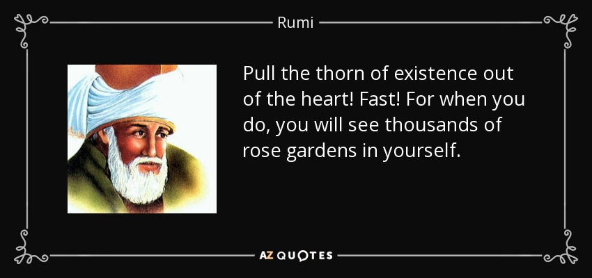 Pull the thorn of existence out of the heart! Fast! For when you do, you will see thousands of rose gardens in yourself. - Rumi