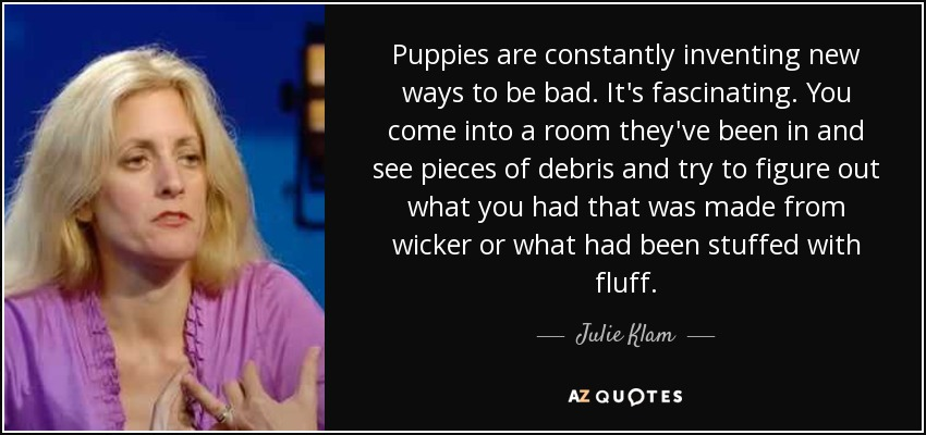 Puppies are constantly inventing new ways to be bad. It's fascinating. You come into a room they've been in and see pieces of debris and try to figure out what you had that was made from wicker or what had been stuffed with fluff. - Julie Klam