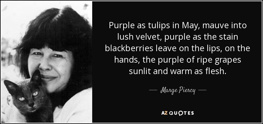 Purple as tulips in May, mauve into lush velvet, purple as the stain blackberries leave on the lips, on the hands, the purple of ripe grapes sunlit and warm as flesh. - Marge Piercy