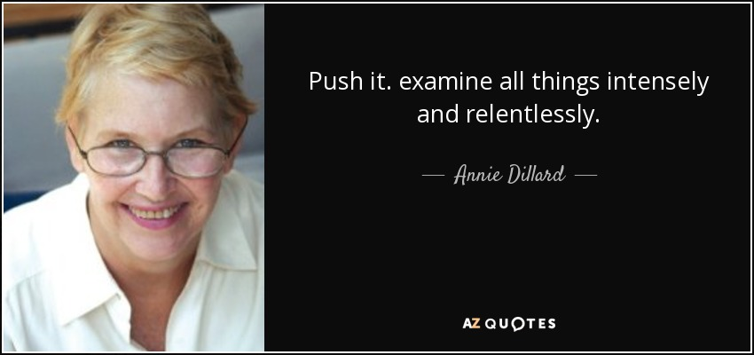 Push it. examine all things intensely and relentlessly. - Annie Dillard