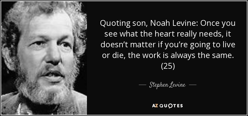 Quoting son, Noah Levine: Once you see what the heart really needs, it doesn't matter if you're going to live or die, the work is always the same. (25) - Stephen Levine