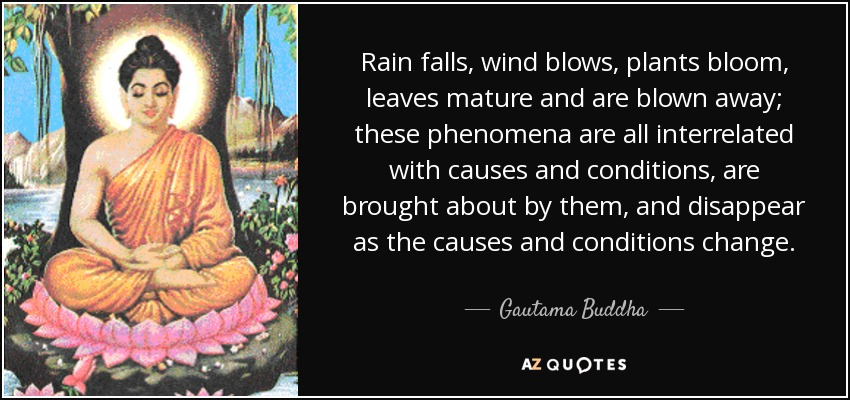 Rain falls, wind blows, plants bloom, leaves mature and are blown away; these phenomena are all interrelated with causes and conditions, are brought about by them, and disappear as the causes and conditions change. - Gautama Buddha