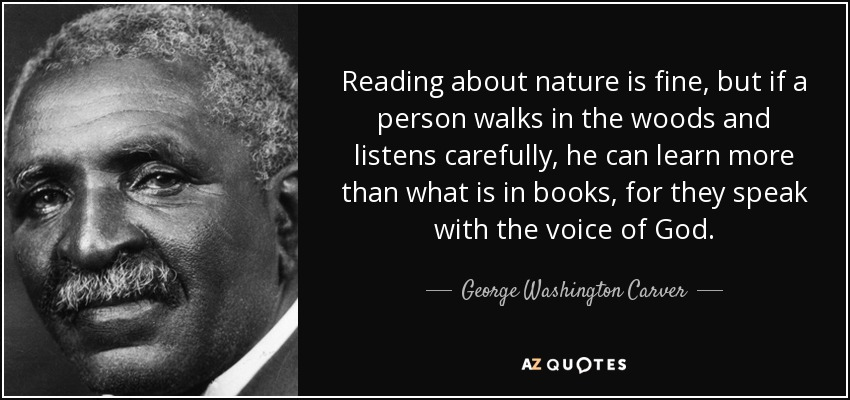 Reading about nature is fine, but if a person walks in the woods and listens carefully, he can learn more than what is in books, for they speak with the voice of God. - George Washington Carver