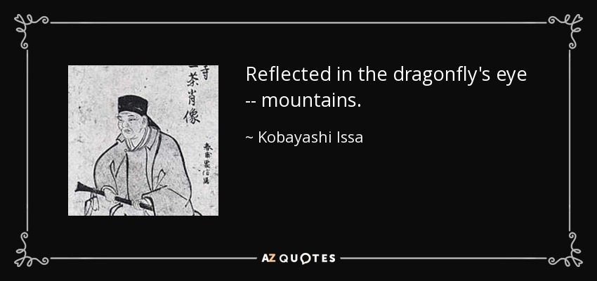 Reflected in the dragonfly's eye -- mountains. - Kobayashi Issa