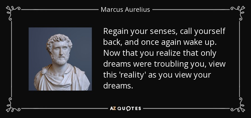 Regain your senses, call yourself back, and once again wake up. Now that you realize that only dreams were troubling you, view this 'reality' as you view your dreams. - Marcus Aurelius