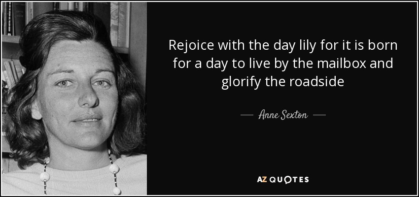 Rejoice with the day lily for it is born for a day to live by the mailbox and glorify the roadside - Anne Sexton