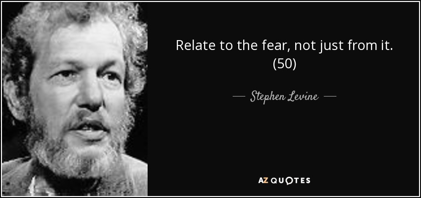 Relate to the fear, not just from it. (50) - Stephen Levine