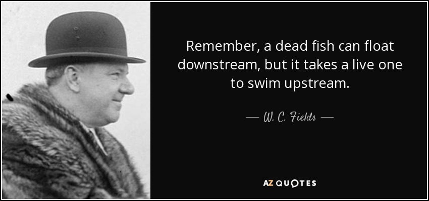 Remember, a dead fish can float downstream, but it takes a live one to swim upstream. - W. C. Fields