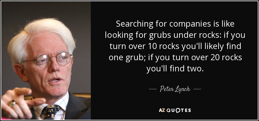 Searching for companies is like looking for grubs under rocks: if you turn over 10 rocks you'll likely find one grub; if you turn over 20 rocks you'll find two. - Peter Lynch