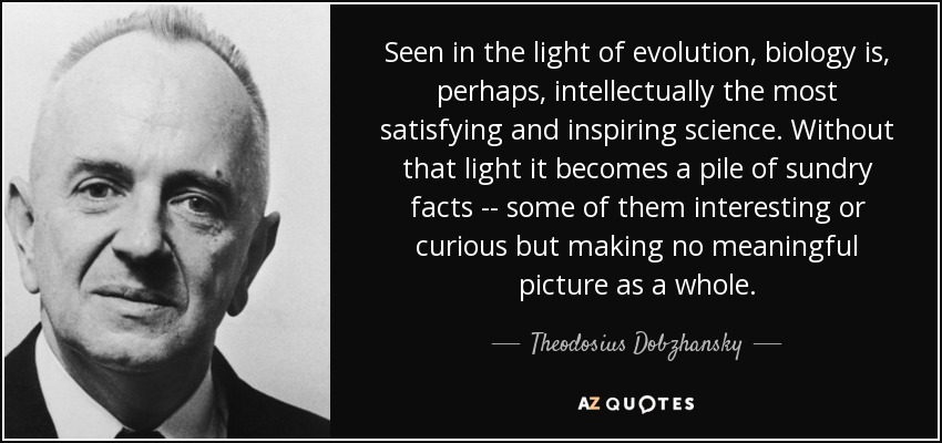 Seen in the light of evolution, biology is, perhaps, intellectually the most satisfying and inspiring science. Without that light it becomes a pile of sundry facts -- some of them interesting or curious but making no meaningful picture as a whole. - Theodosius Dobzhansky