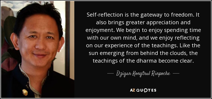 Self-reflection is the gateway to freedom. It also brings greater appreciation and enjoyment. We begin to enjoy spending time with our own mind, and we enjoy reflecting on our experience of the teachings. Like the sun emerging from behind the clouds, the teachings of the dharma become clear. - Dzigar Kongtrul Rinpoche