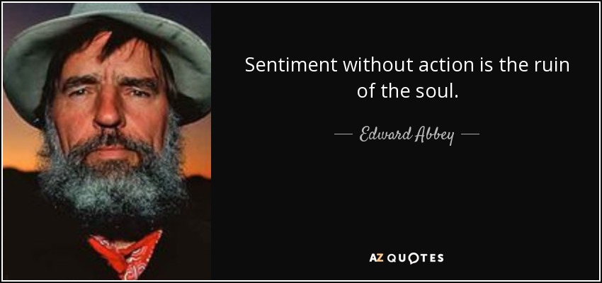 Sentiment without action is the ruin of the soul. - Edward Abbey