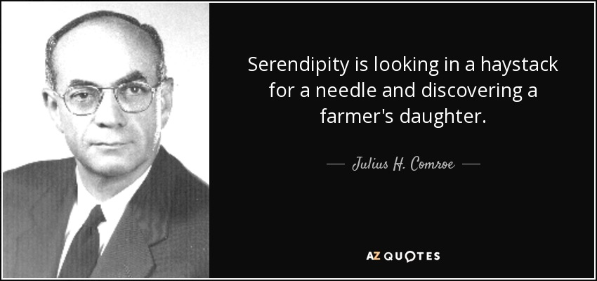 Serendipity is looking in a haystack for a needle and discovering a farmer's daughter. - Julius H. Comroe, Jr.