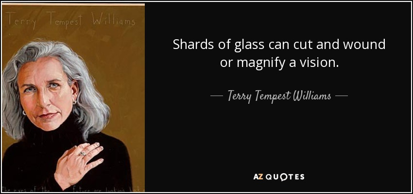 Shards of glass can cut and wound or magnify a vision. - Terry Tempest Williams