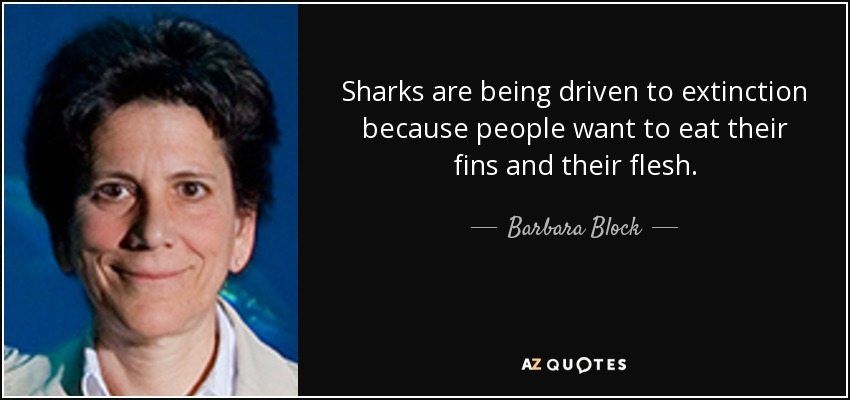Sharks are being driven to extinction because people want to eat their fins and their flesh. - Barbara Block