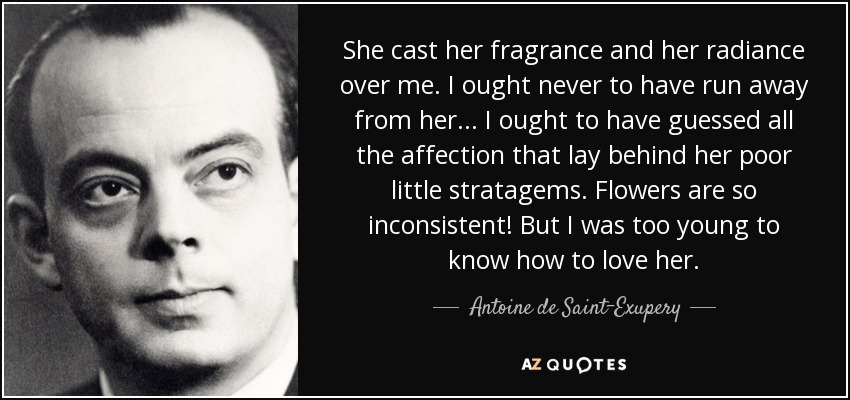 She cast her fragrance and her radiance over me. I ought never to have run away from her... I ought to have guessed all the affection that lay behind her poor little stratagems. Flowers are so inconsistent! But I was too young to know how to love her... - Antoine de Saint-Exupery