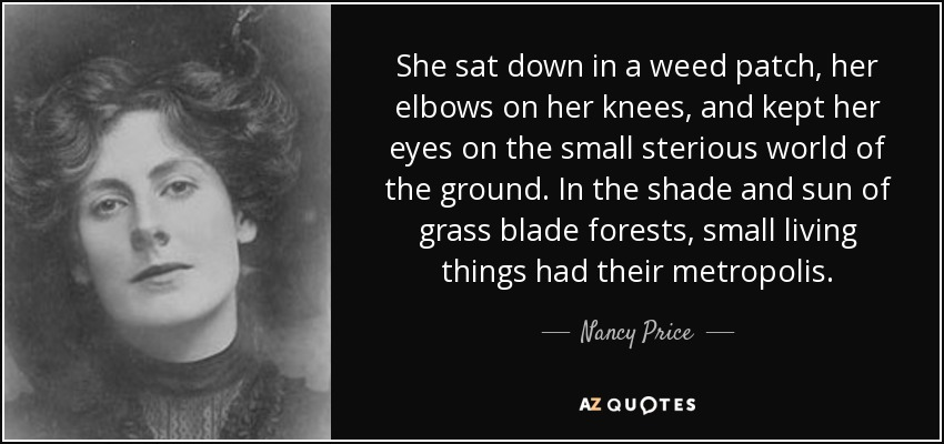 She sat down in a weed patch, her elbows on her knees, and kept her eyes on the small sterious world of the ground. In the shade and sun of grass blade forests, small living things had their metropolis. - Nancy Price