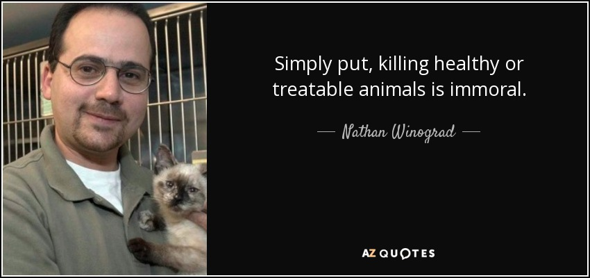 killing animals immoral Use the following search parameters to narrow your results: subreddit:subreddit find submissions in subreddit author:username find submissions by username site:examplecom fin.
