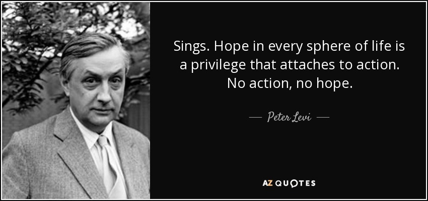Sings. Hope in every sphere of life is a privilege that attaches to action. No action, no hope. - Peter Levi