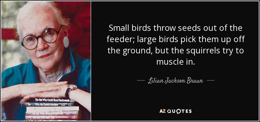 Small birds throw seeds out of the feeder; large birds pick them up off the ground, but the squirrels try to muscle in. - Lilian Jackson Braun