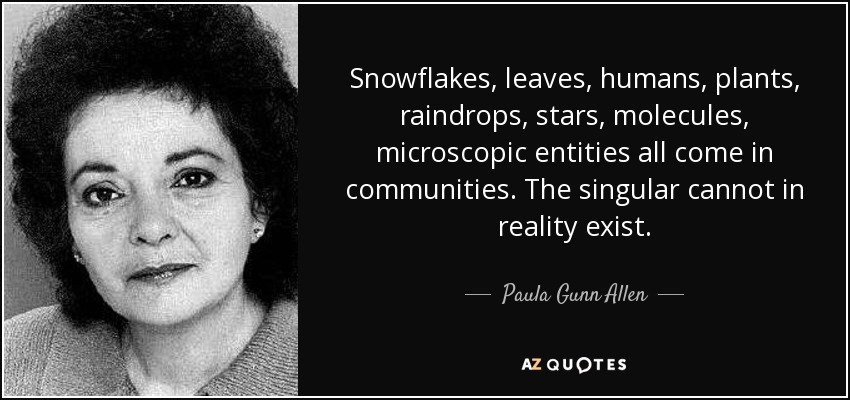 Snowflakes, leaves, humans, plants, raindrops, stars, molecules, microscopic entities all come in communities. The singular cannot in reality exist. - Paula Gunn Allen