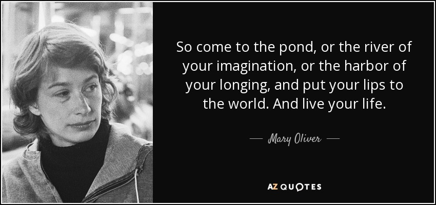 So come to the pond, or the river of your imagination, or the harbor of your longing, and put your lips to the world. And live your life. - Mary Oliver