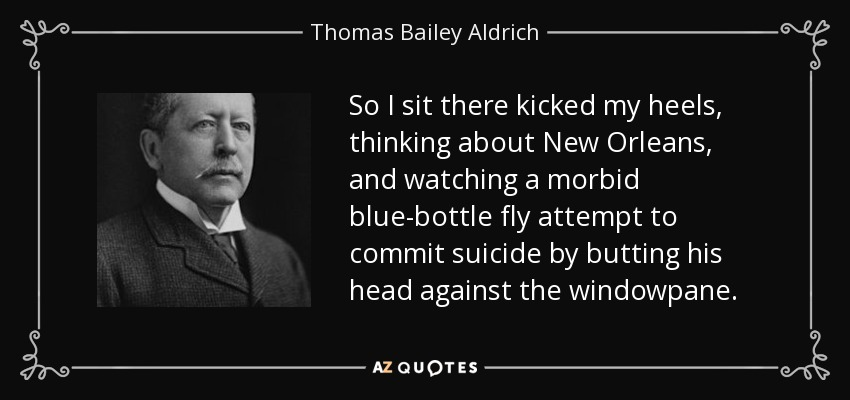 So I sit there kicked my heels, thinking about New Orleans, and watching a morbid blue-bottle fly attempt to commit suicide by butting his head against the windowpane. - Thomas Bailey Aldrich