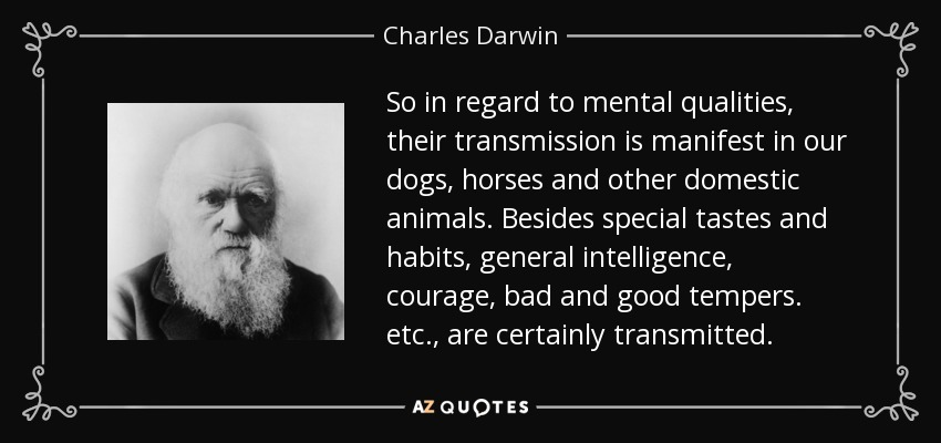So in regard to mental qualities, their transmission is manifest in our dogs, horses and other domestic animals. Besides special tastes and habits, general intelligence, courage, bad and good tempers. etc., are certainly transmitted. - Charles Darwin