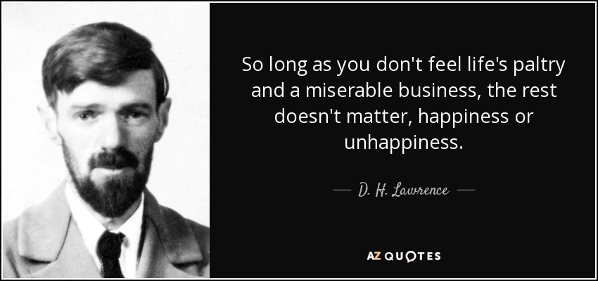 So long as you don't feel life's paltry and a miserable business, the rest doesn't matter, happiness or unhappiness. - D. H. Lawrence