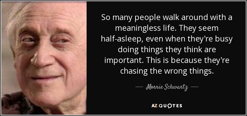 So many people walk around with a meaningless life. They seem half-asleep, even when they're busy doing things they think are important. This is because they're chasing the wrong things. - Morrie Schwartz
