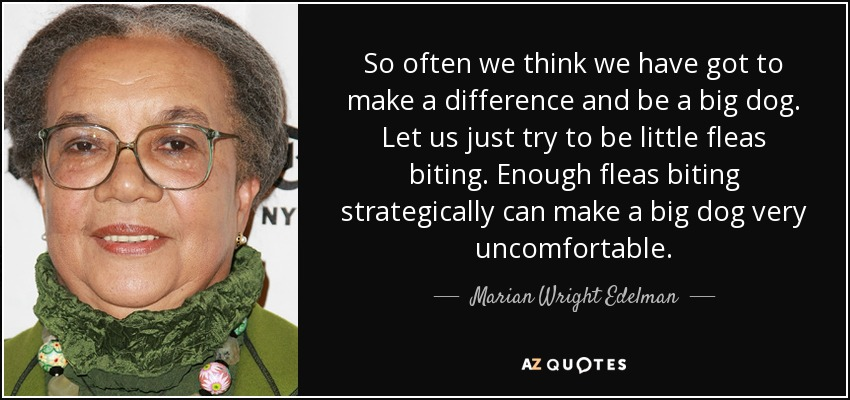 So often we think we have got to make a difference and be a big dog. Let us just try to be little fleas biting. Enough fleas biting strategically can make a big dog very uncomfortable. - Marian Wright Edelman