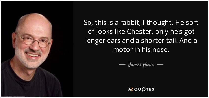 So, this is a rabbit, I thought. He sort of looks like Chester, only he's got longer ears and a shorter tail. And a motor in his nose. - James Howe