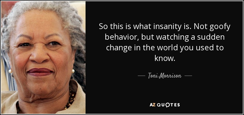 So this is what insanity is. Not goofy behavior, but watching a sudden change in the world you used to know. - Toni Morrison